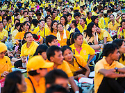 05 DECEMBER 2014 - BANGKOK, THAILAND: Thai gather on Sanam Luang for the celebration of the King's Birthday. Thais marked the 87th birthday of Bhumibol Adulyadej, the King of Thailand, Friday. The King was born on December 5, 1927, in Cambridge, Massachusetts. The family was in the United States because his father, Prince Mahidol, was studying Public Health at Harvard University. He has reigned since 1946 and is the world's currently reigning longest serving monarch and the longest serving monarch in Thai history. Bhumibol, who is in poor health, is revered by the Thai people. His birthday is a national holiday and is also celebrated as Father's Day. He is currently hospitalized in Siriraj Hospital, recovering from a series of health setbacks.     PHOTO BY JACK KURTZ