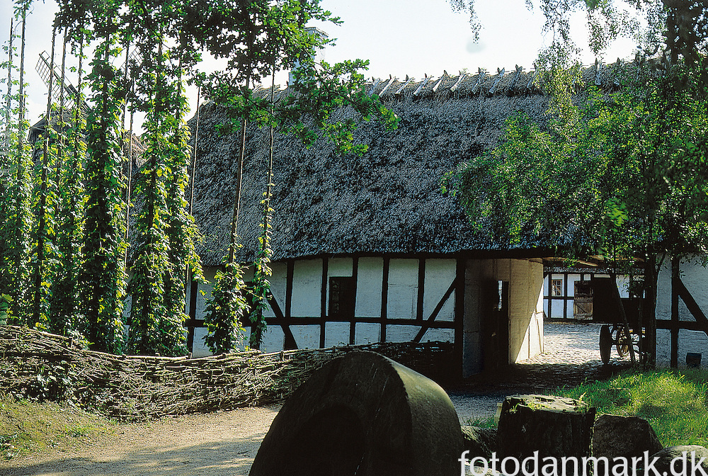 The Funen Village (in Danish: Den Fynske Landsby) is a Danish open air museum located in the Fruens Bøge district of Odense. It features 25 buildings from Funish villages, most of which date to the 18th and 19th century. Founded in 1942 as a public works project.