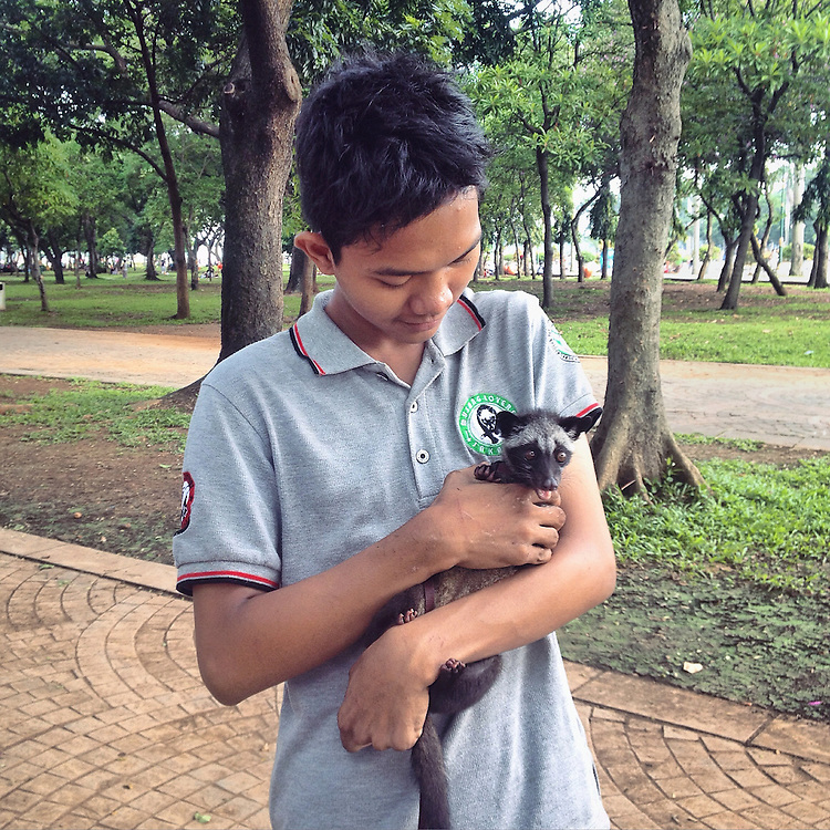A boy holds his pet Musang also known as Civet, which he named Neo, during a Musang Lovers Meet in Monas. Musang is a nocturnal mammal native tropical Asia and Africa.