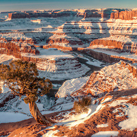 Winter sunrise over the Colorado River from Dead Horse Point, Utah.