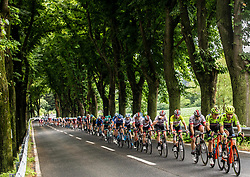 Peloton in Vipava during 4th Stage of 26th Tour of Slovenia 2019 cycling race between Nova Gorica and Ajdovscina (153,9 km), on June 22, 2019 in Slovenia. Photo by Vid Ponikvar / Sportida