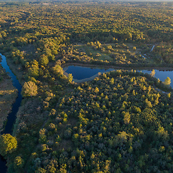 Drone view of Raven Brook and woods (cedar swamp) in Middleborough,  Massachusetts.