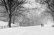 The East Drive in Central Park during the blizzard of 2016.