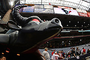 The Houston Texans bull looks over the field prior to the NFL football game against the Seattle Seahawks on December 13, 2009 in Houston, Texas. ©Paul Anthony Spinelli