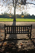 Empty bench and autumn leaves in Dulwich Park, London borough of Southwark.