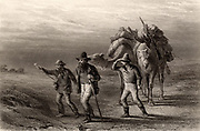Burke and Wills Expedition to explore the interior of Australia (1860-1861). Robert O'Hara Burke (1820-1861) and William John Wills (1834-1861) with John A King (1838-1872), another member of the expedition returning to their depot at Coopers Creek, Queensland.  Burke and Wills died of starvation, while King was found by friendly natives and cared for until a rescue party arrived. Engraving c1880.