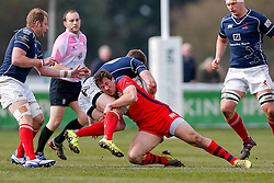 Bristol Rugby Outside Centre Tommaso Benvenuti tackles London Scottish Fly-Half Peter Lydon - Mandatory byline: Rogan Thomson/JMP - 02/04/2016 - RUGBY UNION - Richmond Athletic Ground - London, England - London Scottish v Bristol Rugby - Greene King IPA Championship.