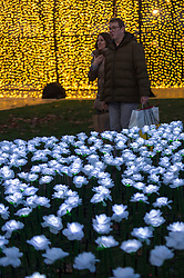 "IMAGES CORRECTLY SIZED © Licensed to London News Pictures. 30/11/2019. LONDON, UK. Visitors plant a rose in the ""Ever After Garden"" which has opened to the public in Grosvenor Square. Designed by Anya Hindmarch and Camilla Morton in memory of their friend and top Production Designer Michael Howells, the Ever After Garden comprises a space filled with over 27,000 illuminated white roses. Visitors can plant a rose in memory of loved ones they have lost, the cost of each rose helping to raise funds for The Royal Marsden Cancer Charity. The garden is open until 22 December. Photo credit: Stephen Chung/LNP"