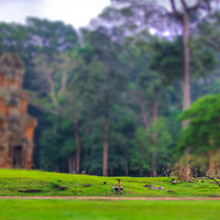 Tilt shift photo of girl on bike in Angkor Wat looks like a toy set, Cambodia
