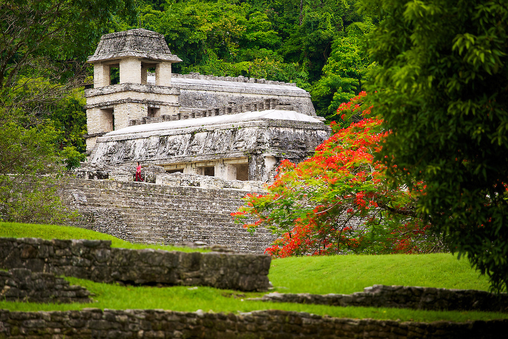 Even the grand scale of El Palacio is dwarfed by the jungle of Palenque, México.