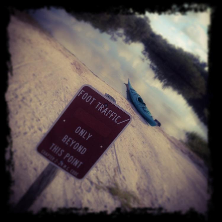 Waiting on adventure at Robinson Preserve, Bradenton, Florida. Photo by Richard M. Porter