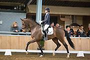 Danielle Houtvast - Fernando<br /> Stal van de Sande Dressuurtalent 2015<br /> © DigiShots