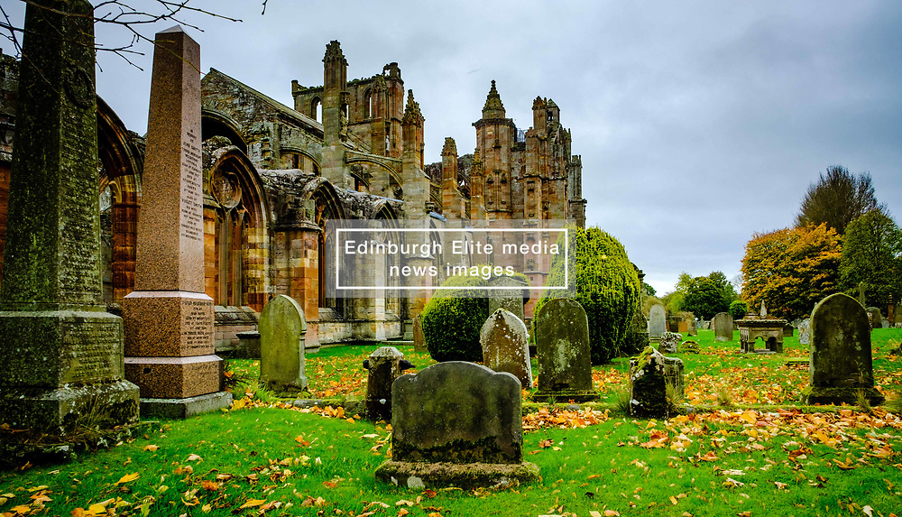 Autumn colour at Melrose Abbey in the Scottish Borders.<br /> <br /> (c) Andrew Wilson | Edinburgh Elite media
