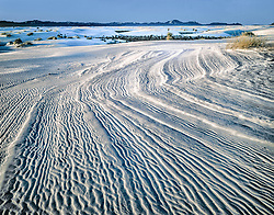 White Sands national Monument in late afternoon light looking across a field of white gypsum textured with weathered lines