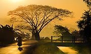 Sunrise near Chiangmai, Thailand.