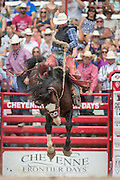 Rookie Saddle Bronc rider J.W. Meiers hangs on to horse James Bond at the Cheyenne Frontier Days rodeo at Frontier Park Arena July 24, 2015 in Cheyenne, Wyoming. Frontier Days celebrates the cowboy traditions of the west with a rodeo, parade and fair.
