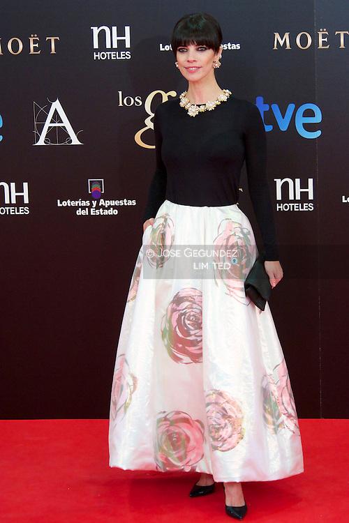 Maribel Verdu arrives to Goya Cinema Awards 2013 ceremony, at Auditorium Hotel on February 17, 2013 in Madrid, Spain