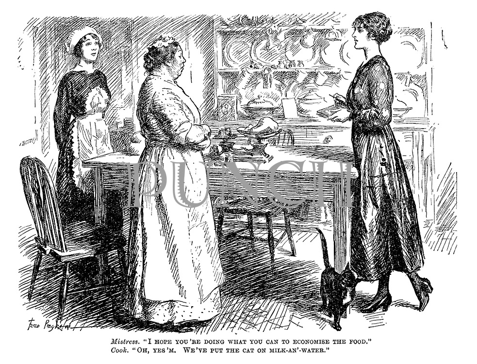 "Mistress. ""I hope you're doing what you can to economise the food."" Cook. ""Oh, yes'm. We've put the cat on milk-an'-water."""