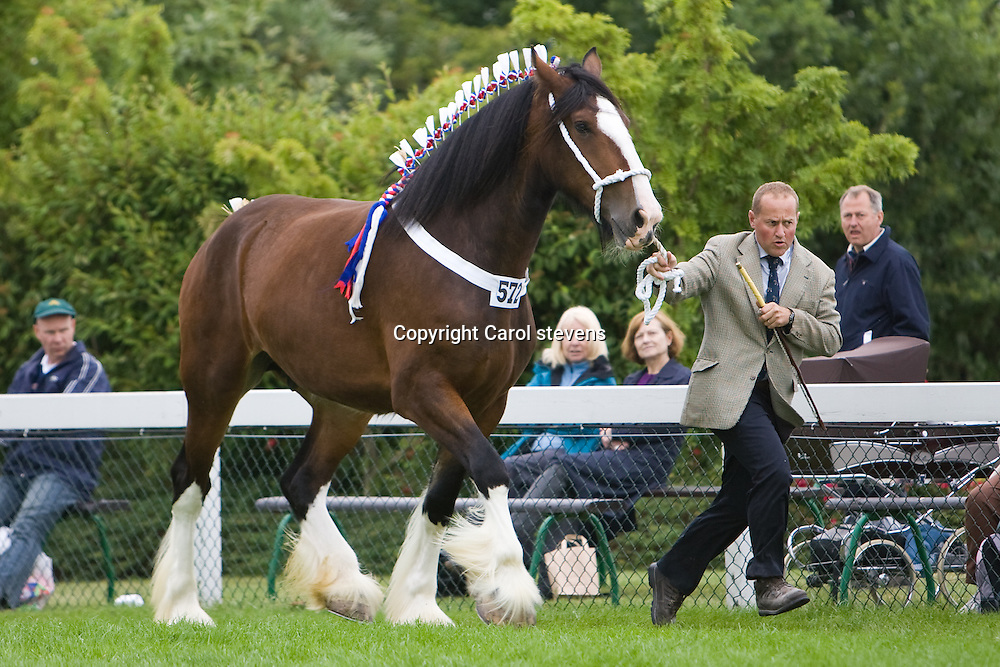 Great Yorkshire Show 2010   <br />