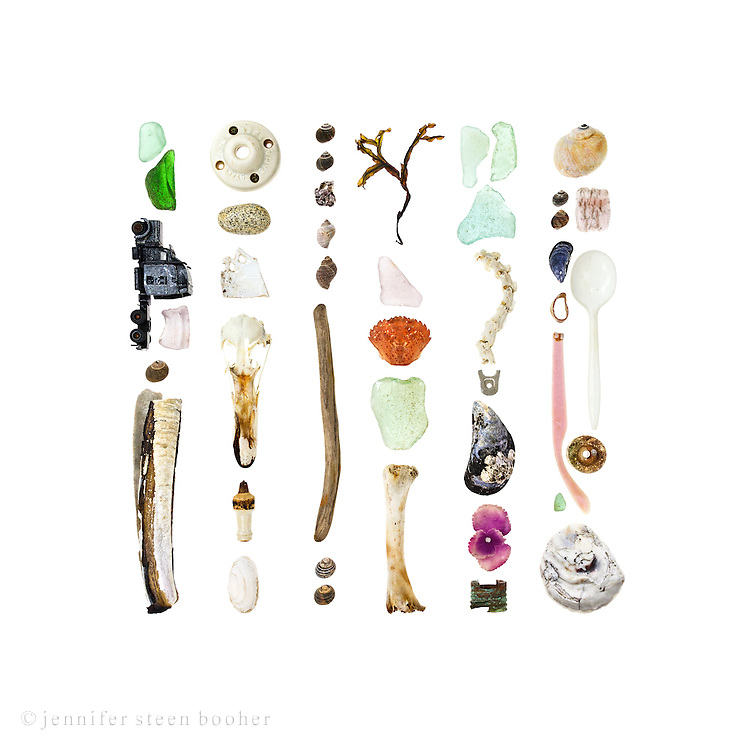 From left to right, top to bottom:<br /> <br /> 1. sea glass, die-cast toy truck, sea glass, Common Periwinkle (Littorina littorea), Razor Clam (Ensis directus)<br /> 2. ceramic electrical fixture, granite beach stone, porcelain shard, Common Eider skull (Somateria mollissima), ceramic spark plug, Soft-shelled Clam (Mya arenaria)<br /> 3. more periwinkles, Northern Rock Barnacle clump (Semibalanus balanoides), two Dog Whelks (Nucella lapillus), driftwood, two Common Periwinkle<br /> 4. seaweed – I'm not so good with marine algae, but I think it's Rockweed (Fucus distichus), sea glass, Green Crab (Carcinus maenas), sea glass, bird leg bone<br /> 5. more sea glass, Common Eider spine, aluminum soda can tab, Blue Mussel (Mytilus edulis), fabric flower, copper doohickey (maybe part of a hose)<br /> 6. Moon snail (Lunatia heros), more periwinkles, styrofoam packing peanut, another Blue Mussel, plastic spoon, lobster-claw band, plastic earpiece from sunglasses, sea glass, and an oyster shell (the shape looks like Ostrea edulis, a.k.a. the European flat oyster, which means it was most likely farmed, not wild)