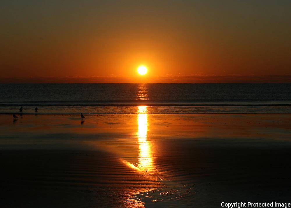 Brilliant Jekyll Island sunrise with sea gulls