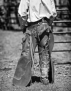 A Colorado ranch cowboy in his bat wing chaps and tall top boots waits for another calf to be brought to him for branding.