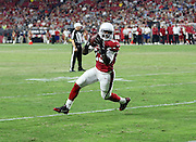 San Diego Chargers running back Branden Oliver (43) catches a pass in the flat as he runs around the end for a gain of 9 yards while avoiding diving Arizona Cardinals defensive back Chris Clemons (29) during the 2015 NFL preseason football game against the Arizona Cardinals on Saturday, Aug. 22, 2015 in Glendale, Ariz. The Chargers won the game 22-19. (©Paul Anthony Spinelli)