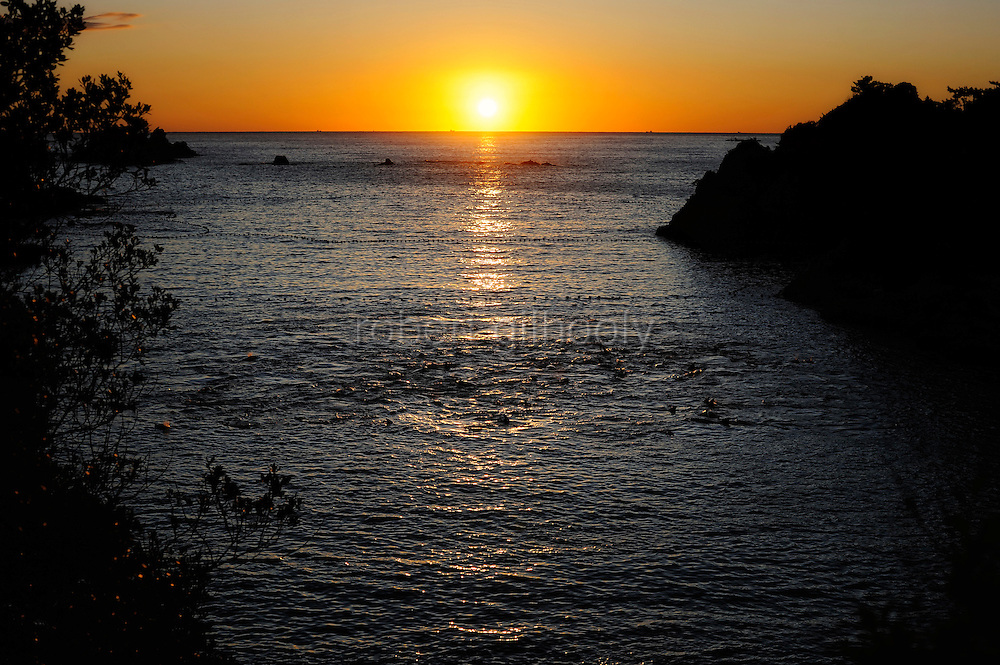 About 100 bottle neck and short fin dolphins swim at sunrise in the cove that is at the center of a controversial film, due for release in the UK next month, in Taiji, Japan on 10 September 2009. The captured dolphins were the first catch of the season at Taiji, which has a target catch of around 2,000 dolphins during the 6-month season..Photographer: Robert Gilhooly....