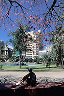 Plaza del Entrevero, Montevideo, Uruguay