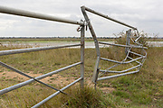 A dented agricultural gate marshland opposite Two Tree Island, at Leigh creek near Leigh-on-Sea, on 10th September 2019, in Leigh-on-Sea, Essex, England.