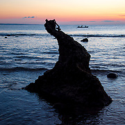 Coral stone shape