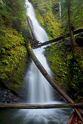 Murhut Falls, Olympic National Forest, Washington, US