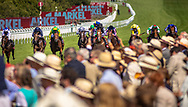 Tom Queally on Rumble InTheJungle (black stars on white sleeves) wins the Markell Insurance Molecomb Stakes at the Qatar Goodwood Festival.<br /> Picture date: Wednesday August 1, 2018.<br /> Photograph by Christopher Ison ©<br /> 07544044177<br /> chris@christopherison.com<br /> www.christopherison.com