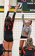 Cedar Rapids Xaver's Madsy Richards (15) tries to get the ball over the outstretched arms of West Delaware's Carlee Ketchum (1) in the Class 4A regional final match at Beckman High School in Dyersville on Tuesday, November 5, 2013. West Delaware defeated Xavier 3-1.