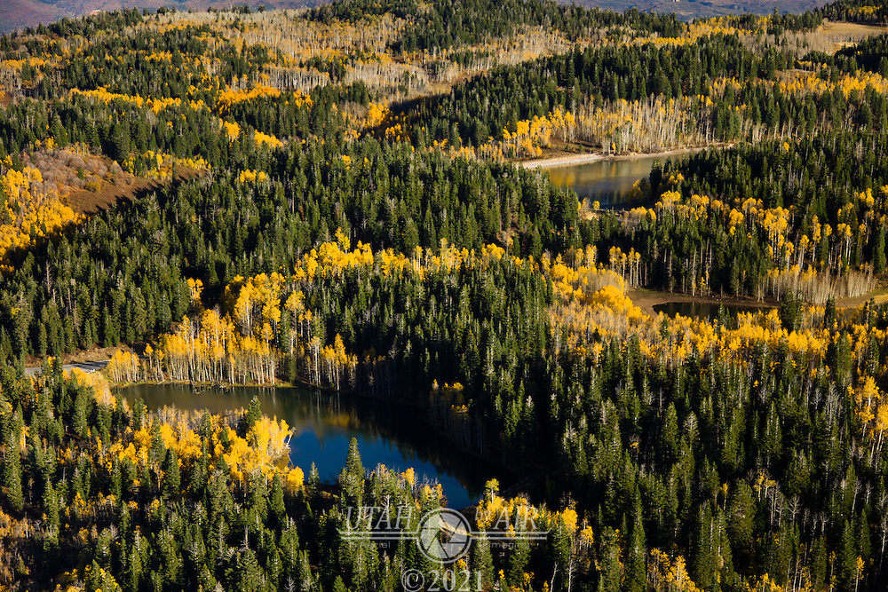 Fall Colors around Payson Lakes in Payson Canyon
