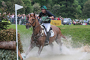 HORSEWARE GOOD NEWS AT LAST ridden by Harold Megahey (Ireland) at Bramham International Horse Trials 2016 at  at Bramham Park, Bramham, United Kingdom on 11 June 2016. Photo by Mark P Doherty.