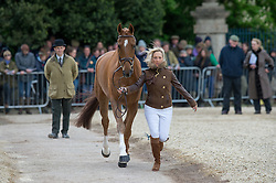 Collett Laura, (GBR), Grand Manoeuvre<br /> First Horse Inspection - Mitsubishi Motors Badminton Horse Trials <br /> Badminton 2015