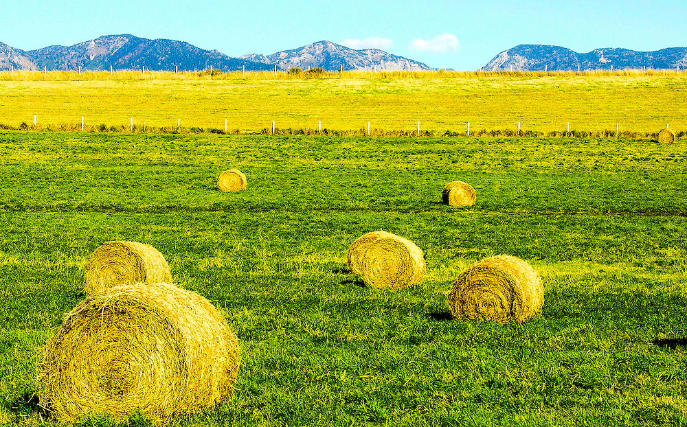 A rural ranch in Montana. The mid afternoon sun adds brightness to the scene.  I intentionally positioned a large hay roll at the lower left to add more depth to the scene.