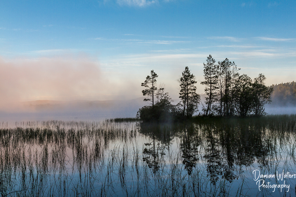 Loch Garten with early morning mist rising, Scotland and Abernethy Forest