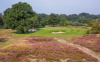 HILVERSUM - hole 10 met heide, Hilversumsche Golf Club, COPYRIGHT  KOEN SUYK