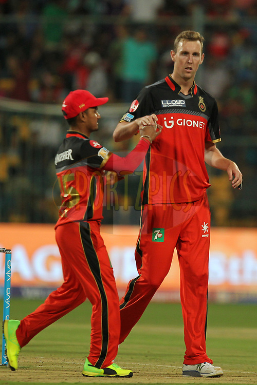 Billy Stanlake of Royal Challengers Bangalore celebrates wicket of Sanju Samson of Delhi Daredevils during match 5 of the Vivo 2017 Indian Premier League between the Royal Challengers Bangalore and the Delhi Daredevils held at the M.Chinnaswamy Stadium in Bangalore, India on the 8th April 2017Photo by Prashant Bhoot - IPL - Sportzpics
