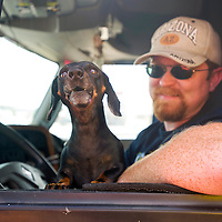 092812       Brian Leddy<br /> Michael Sharp and his dog wait in line at Uncle Roy's BBQ in Grants on Friday. Sharp, who is from Tennesee, says he visits the drive-thru restaurant every time he is in town.