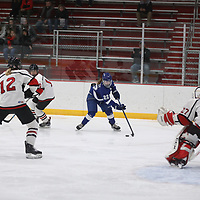 Women's Ice Hockey: Lake Forest College Foresters vs.  Concordia University