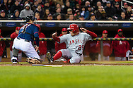 Peter Bourjos #25 of the Los Angeles Angels slides safely into home ahead of the throw to Joe Mauer #7 of the Minnesota Twins on April 16, 2013 at Target Field in Minneapolis, Minnesota.  The Twins defeated the Angels 8 to 6.  Photo: Ben Krause
