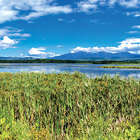 Pondicherry Wildlife Refuge, Jefferson, New Hampshire.