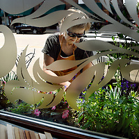 Mary Selvig is framed through the window of her business, <br /> Mary Selvig Framing, in the Crane Centre located on 8th Street in downtown Sioux Falls as she tends to her garden on Thursday, July 28, 2016.