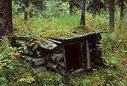 Dog House, Spruce Forest, Denali National Park, Alaska