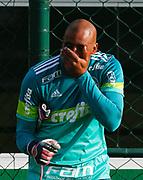 30.04.2018 - SÃO PAULO, SP -  O goleiro Jailson durante o treino do Palmeiras no CT da Barra Funda na zona oeste de São Paulo na tarde desta segunda-feira 30 ( Foto: MARCELO D.SANTS / FRAMEPHOTO )