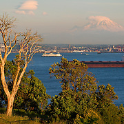 Mt. Rainier at sunset from Magnolia Bluff, Seattle, Washington