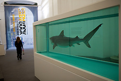 Damien Hirst<br /> Heaven<br /> 2008/2009<br /> Glass, steel, shark, acrylic and formaldehyde solution<br /> 84.25 x 151.02 x 55.83 in (2140 x 3836 x 1418 mm) (including plinth)<br /> DACS 2009